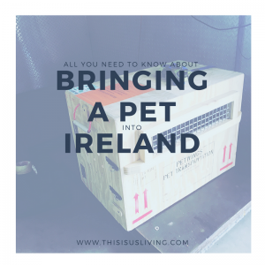 bringing a pet into Ireland