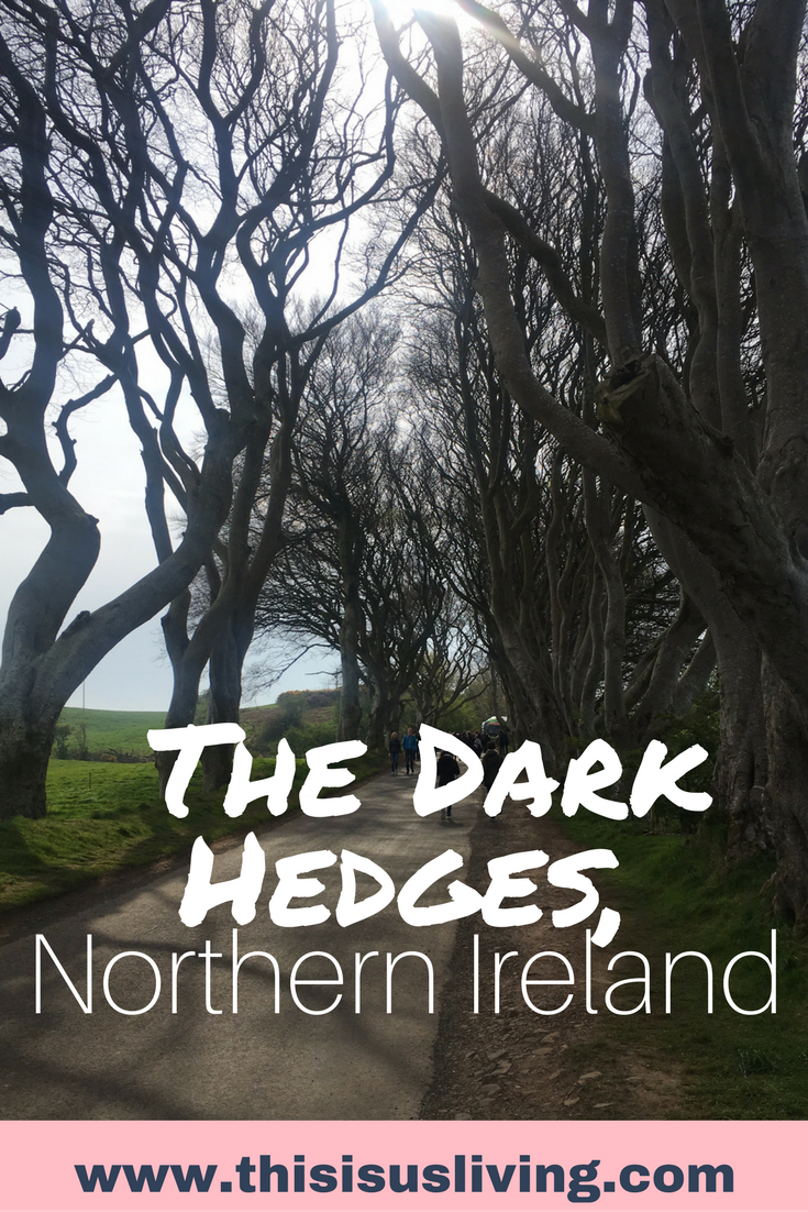 Game of Thrones fan? Visit the Dark Hedges in Northern Ireland. Take a bus tour up to Northern Ireland from Dublin. In one day: stop at several stops, learn a bit of Irish history and see beautiful views and coastlines.