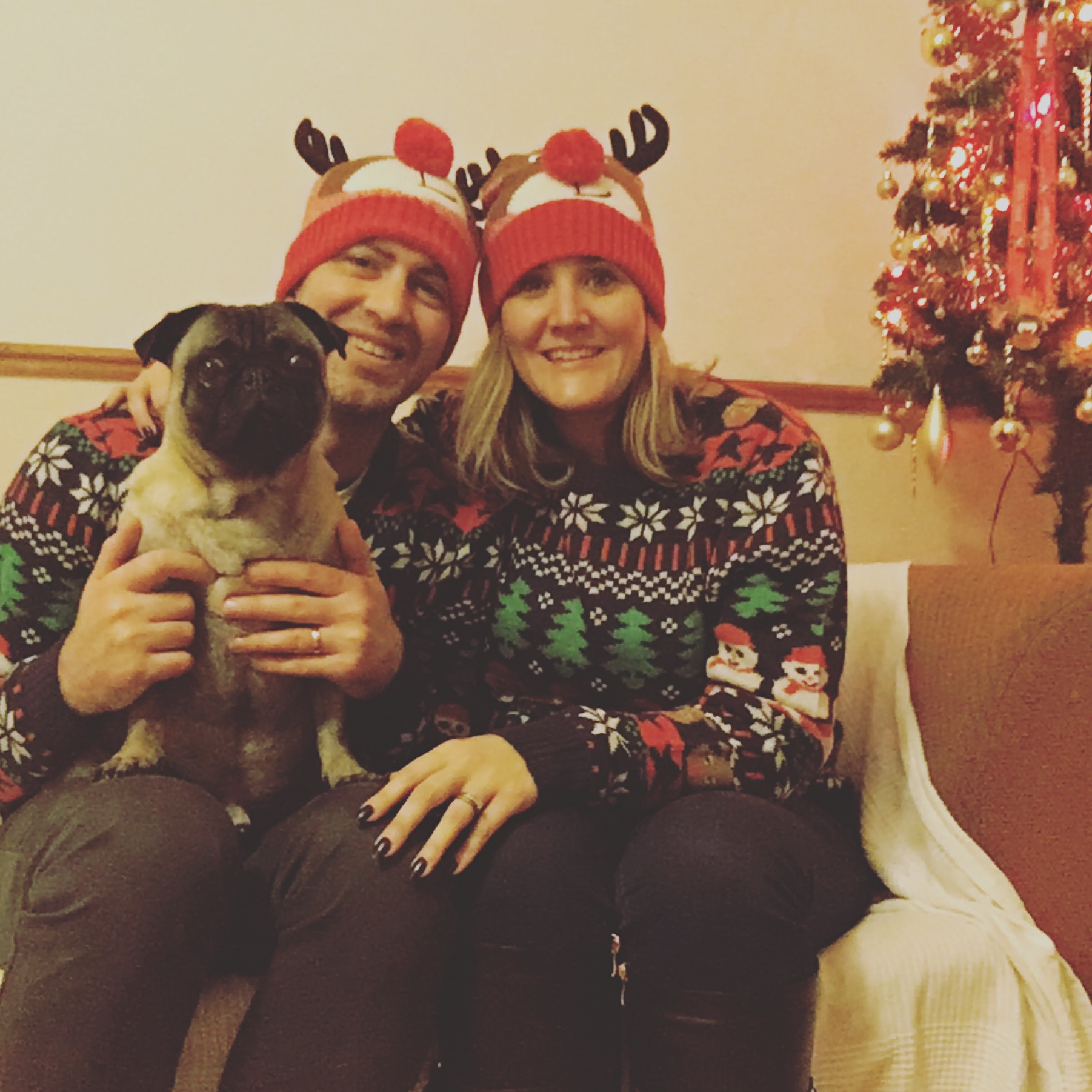 A family of reindeer for Christmas