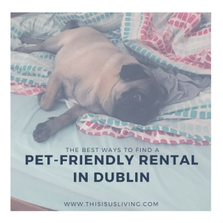 Although it is super tricky to find a rental that is pet friendly, it is possible. I tried to list a few of the considerations you should have when looking for a pet-friendly rental in Dublin.